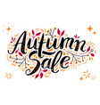 autumn sale lettering with hand drawn vector image vector image