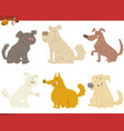 happy dogs cartoon characters vector image vector image