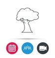 Oak tree icon Forest wood sign vector image vector image