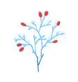 snowy tree branch with red vector image vector image