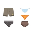 Underwear panties clothes set vector image vector image