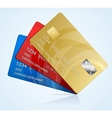 Credit Cards isolated vector image vector image