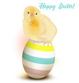 easter greeting card with chicken sitting on egg vector image vector image