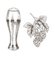 hop brunch and beer goblet vector image vector image