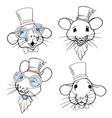 rats vector image vector image