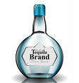 tequilla glass bottle realistic product vector image vector image