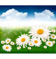Nature background with beautiful flowers and blue vector image