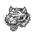 aggressive tiger head concept vector image