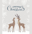 deer christmas card vector image vector image