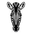 head mascot zebra isolated on white vector image