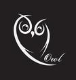 owl design vector image