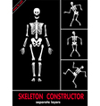 skeleton constructor vector image vector image