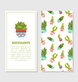 succulents card template with place for text vector image