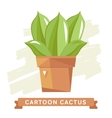 Cactus flower cactus isolated vector image vector image