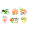 fresh natural citrus juice labels set orange vector image