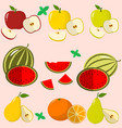 fruits and berries collected in a set vector image vector image