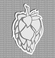 Gray Hop Flower Beer ingredient vector image vector image