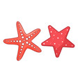 starfish sea or ocean symbols isolated at white vector image vector image