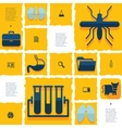 veterinary flat infographic vector image vector image