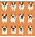 Set of flat pug dog icons vector image