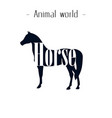 animal world horse background image vector image vector image