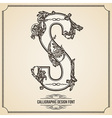 Calligraphic font Letter S vector image