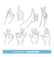 Gestures of human hands vector image