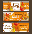 seasonal autumn sale banners vector image vector image