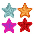 Set colored starfish Animals of ocean vector image vector image