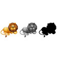 set of male lion character vector image vector image