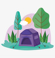 tent camping picnic in park landscape vector image vector image