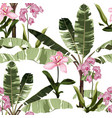 tropical vintage pink orchid palm trees bananas vector image vector image