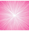 Sun Burst Blast Background Pink vector image vector image