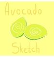 avocado sketch had drawn with chalk vector image vector image