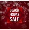 Black Friday sale background EPS 10 vector image vector image