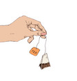female hand with tea bag flat style vector image