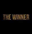 golden glitter isolated word the winner vector image vector image