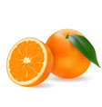 juicy orange with a slice vector image vector image
