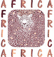 africa and abstract texture leopard vector image