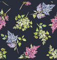 beautiful floral spring seamless pattern vector image