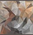 beige irregular polygon background vector image vector image