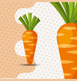 fresh vegetable carrots on dots background vector image