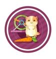 Golden hamster eating carrot vector image