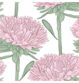 seamless background with pink flowers aster vector image vector image