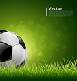 Soccer ball on grass background vector | Price: 3 Credits (USD $3)