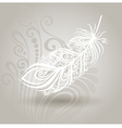 Template with Feather in Ornate Background vector image