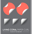 trendy color coral round circle with paper curl vector image vector image