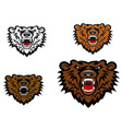 Wild bear tattoo vector image