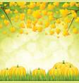 autumn garden vector image