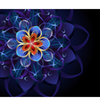 abstract blue flower vector image vector image